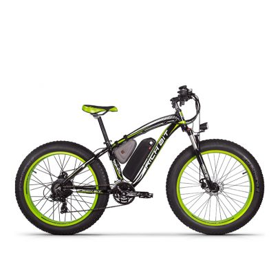 Electric Bike 17AH 1000W eBike
